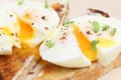 همه چیز درباره تخم مرغ