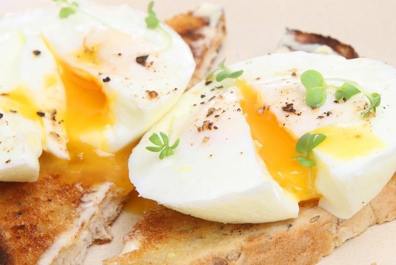 خواص انواع تخم پرنده - خاصیت تخم بلدرچین ، غاز ، اردک و بوقلمون
