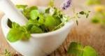 معجزه طب سنتی و گیاهان دارویی در درمان بیماری ها