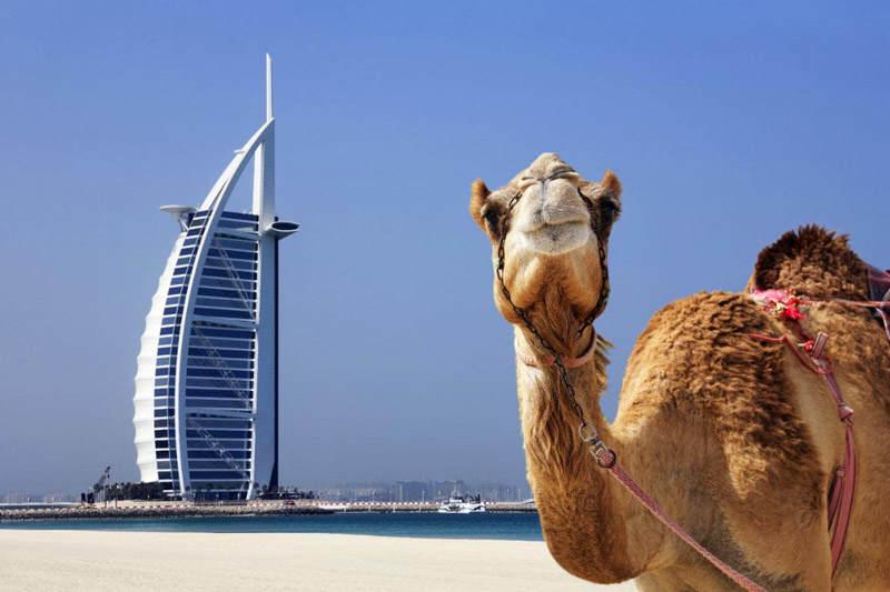بهترین زمان سفر به دبی