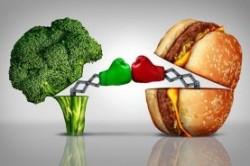 راهنمای تغذیه قبل،بعد و حین ورزش