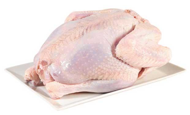 گوشت مرغ و لاغری