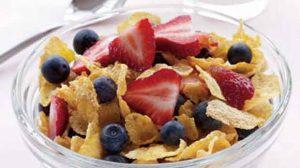 صبحانه شیر کم چرب و توت