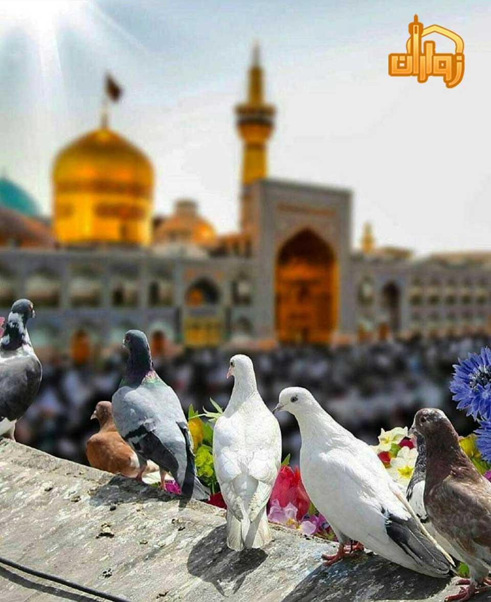 رزرو هتل های شهر مشهد