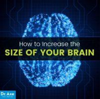 افزایش اندازه مغز