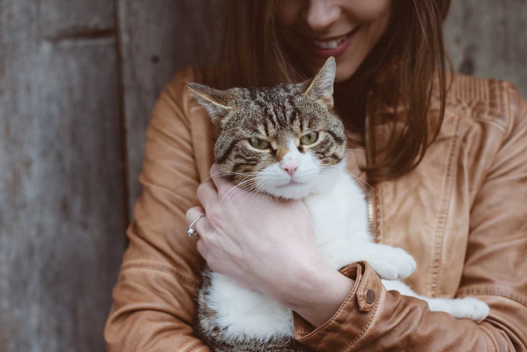 هزینه و شرایط حمل حیوان خانگی با هواپیما