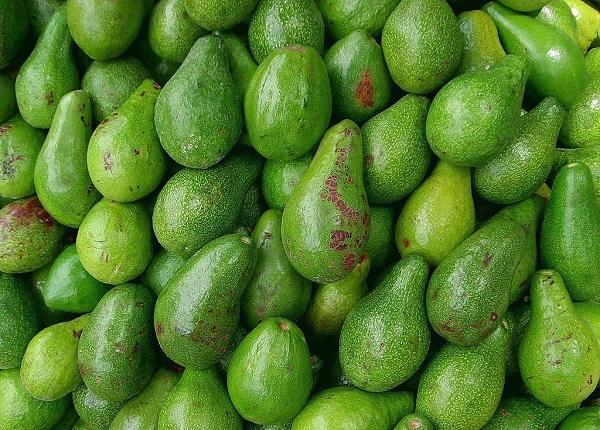 مواد غذایی سالم و ارزان برای افزایش وزن