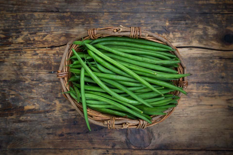 سبزی با رشد سریع,لوبیا سبز