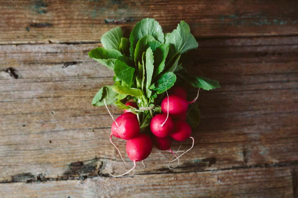 سبزی با رشد سریع,تربچه