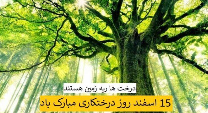 روز درختکاری مبارک باد