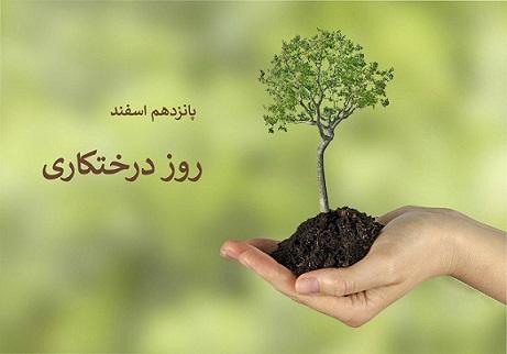 روز درختکاری سال ۹۹ چه روزی است؟ تاریخ دقیق روز درختکاری امسال