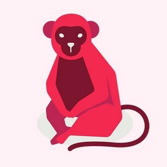 فال چینی ازدواج,طالع بینی چینی میمون