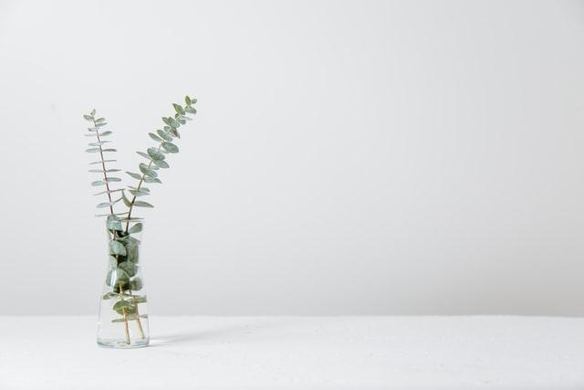 تعبیر دیدن گلدان