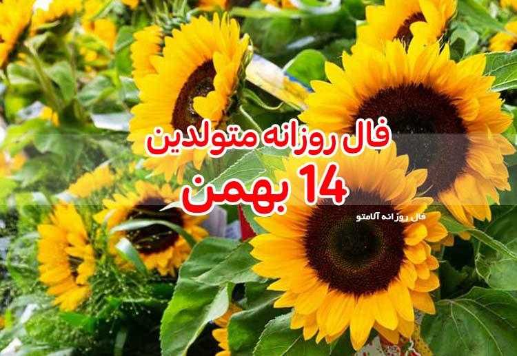 فال روزانه 14 بهمن 1399