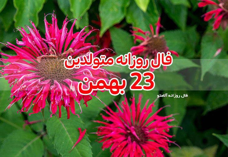 فال روزانه 23 بهمن 1399