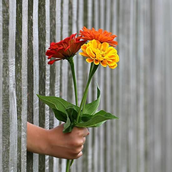 متن عاشقانه خاص کوتاه و بلند و زیبا برای همسر و عشقم