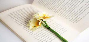 6 رمان عاشقانه برتر در سال 2021 که همین حالا باید خواندن آنها را شروع کنید